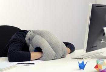 ostrich-pillow-vogel-strauss-kissen-fur-powernapping-a58