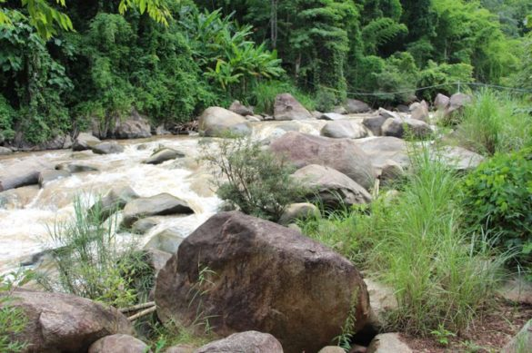 White Water Rafting in Chiang Mai   Mit Siam River Adventures 49