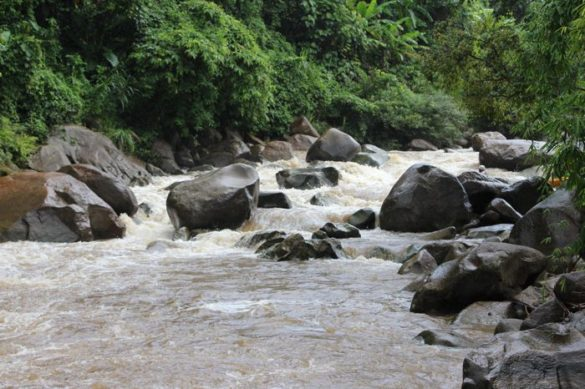 White Water Rafting in Chiang Mai   Mit Siam River Adventures 37