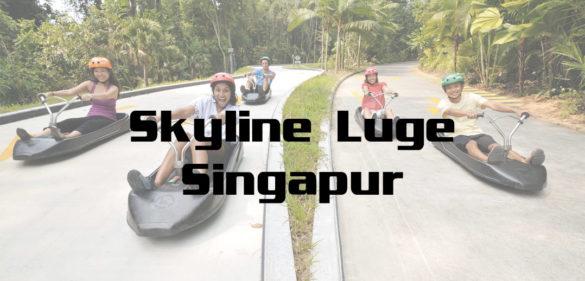 Skyline Luge Sentosa Singapur Luge Ride