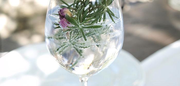 gin seminar erlebnisgeschenk